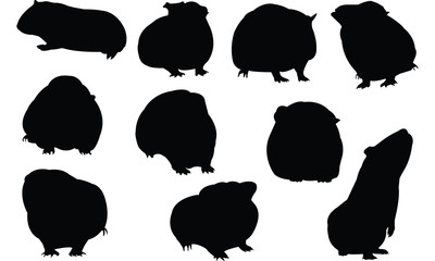 Guinea pig Silhouette vector illustration