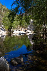 Reflections and deciduous trees along Sabino Creek in Sabino Canyon, near Tucson, Arizona