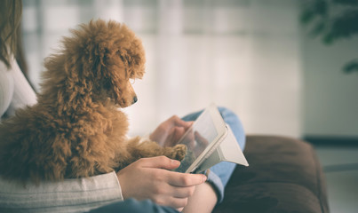 Young girl with puppy sit on sofa using digital tablet.
