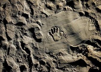Jewish children make hand prints on the sand at a beach at the Jewish settlement of Shirat Hayam.