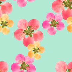 Quince, apple quince. Seamless pattern texture of flowers. Floral background, photo collage