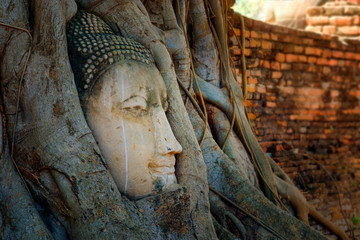 Famous Buddha Head with Banyan Tree Root at Wat Mahathat Temple in Ayutthaya Historical Park, a UNESCO world heritage site, Thailand