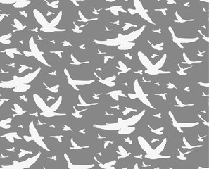 Illustration,  abstract silhouette background with flying birds, seamless gray