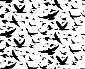 abstract background black silhouette of flying birds, seamless