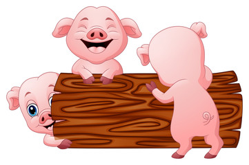 Three little pig cartoon in the log