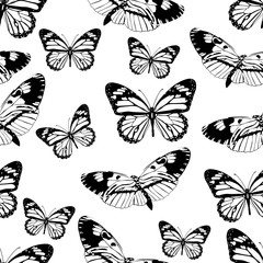 Butterflies seamless pattern, monochrome vector background, coloring book. Black and white various insects on a white backdrop. For fabric design, wallpapers, wrappers, print, decorating