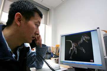 Xu, the head of Chinese researchers, looks at a picture of a tyrannosaur in Beijing