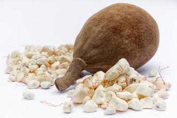 Foto op Canvas Baobab Baobab fruit (Adansonia digitata) on white background, pulp and powder, superfood