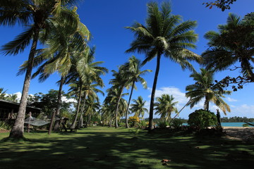 Fiji Ocean