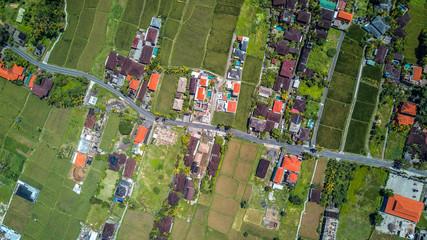 Street in Ubud