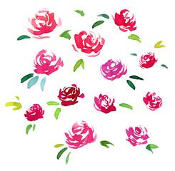 watercolor flower set. nature design elements.