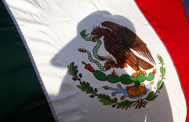 Silhouette of a protester is seen on a Mexican flag during a march on the streets in Mexico City