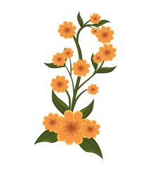 cute flower plant icon vector illustration design