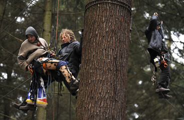 Environmental activists climb tree to demonstrate against  proposed clearance of wood for new airport runway in Frankfurt