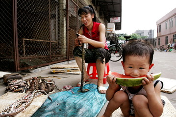 -PHOTO TAKEN 16SEP04- A boy enjoys a slice of watermelon as his mother tears off snake skin at a mar..