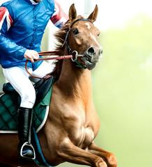 jockey riding a horse galloping