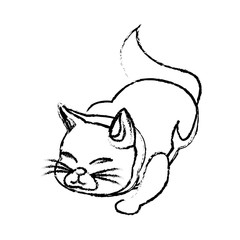 cat animal pet adorable sketch vector illustration