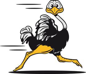 strauss emu witzig rennen laufen