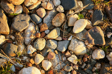 Multicolored little pebbles with grass