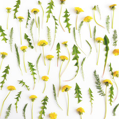 Floral pattern abstract background. Pattern of dandelions.