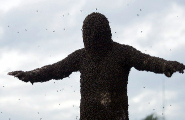 Colombian beekeeper Marin Tellez, 35, stands with a mantle of Africanized bees covering his body in ..