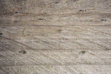 Weathered Softwood