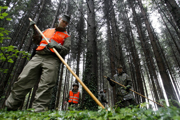 Swiss army search for missing five-year-old girl Ylenia Lenhard at a forest near Oberbuere