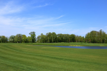 The golf course. Lawn with forest line and blue sky.