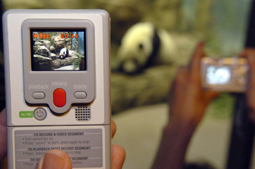 Disposable digital video camcorder is demonstrated in Washington.