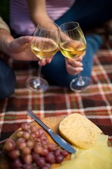 Couple toasting wineglasses by grapes and cheese on picnic blank