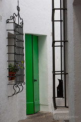 Spanish green door against white wall