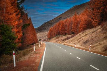 Recess Fitting Magenta Beautiful road in New Zealand Alps