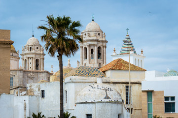 Cathedral of Cadiz in the Old Town, Spain, Andalusia