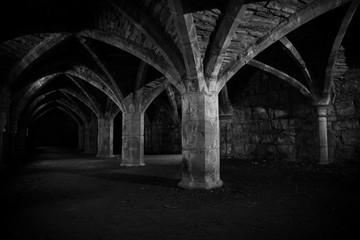 Finchale Priory Durham