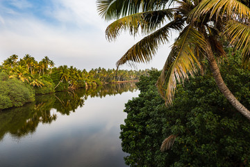View of canal on sunset. Kerala state, South India
