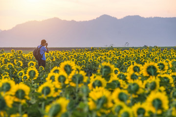 Landscape Photography, Photographer Ready to Take Landscape Pictures on the sunflower field ,Asian photographer Professional Travel Photographer Works,Travel Photographer,Professional Photographer,