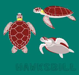 Sea Turtle Hawksbill Cartoon Vector Illustration