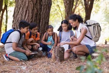 Happy students and teacher examinig tree stump