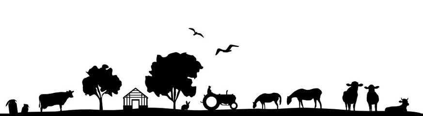 Fototapeta Silhouette Feld und Tiere