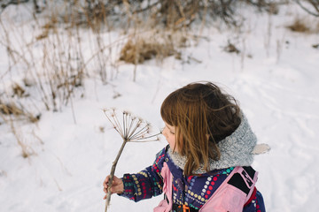 Girl holding dried flower in snow