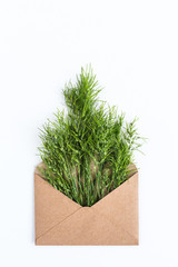 opened craft paper envelope filled with green cereal ears of grass. concept of healthy lifestyle. offer of organic natural food. care of the environment. concept of freshness. top view. flat lay.
