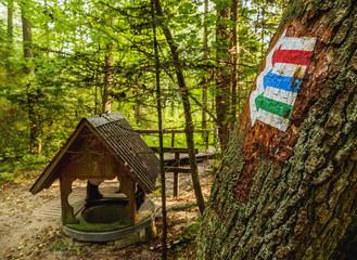 Poland, Lublin Voivodeship, Gorecko Koscielne, Well in the forest
