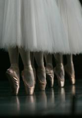 "Ballerinas perform ""Les Sylphides"" at a rehearsal of ""Dancing 4 Aids Orphans"" in Yokohama"