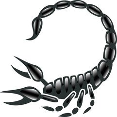 Black and White Scorpion Design