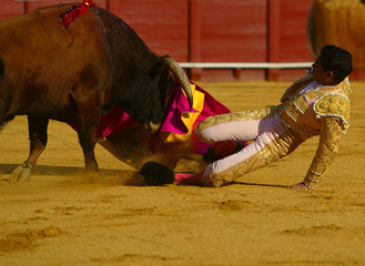 COLOMBIAN MATADOR BOLIVAR IS TACKLED BY A BULL DURING BULLFIGHT IN SEVILLE.