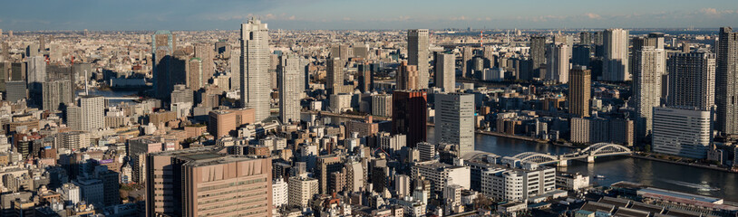 Tokyo cityscape with dense buildings at dusk
