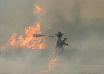 A farmer burns a paddy field in Thailand's Nakhonsawan province, north of Bangkok ,  270 km (167 miles) north of Bangkok