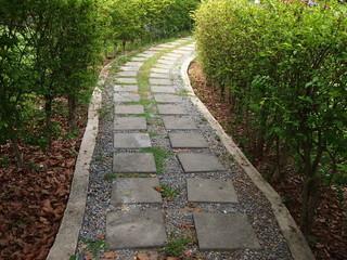 Sidewalk and hedge