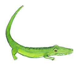 Green cartoon crocodile with long curved tail painted in watercolor on clean white background