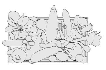 2d cartoon illustration of vegetable